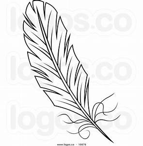 Feathers, Clipart black and white and Line drawings on ...