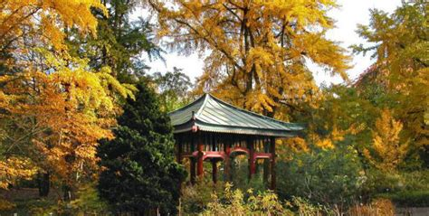 Botanischer Garten Berlin Picknick by Botanical Garden Dahlem Activities For Fall Top10berlin