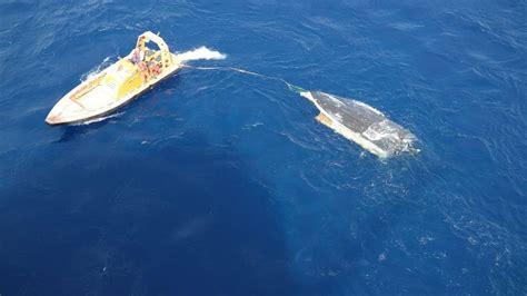 Boat Crash Jupiter by Boat Belonging To 2 Missing Jupiter Found At Sea