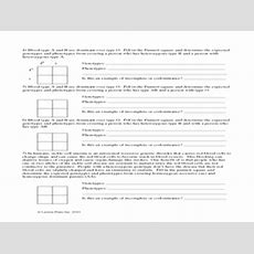 Incomplete Dominant And Codominant Traits Worksheet 7th  10th Grade Worksheet  Lesson Planet