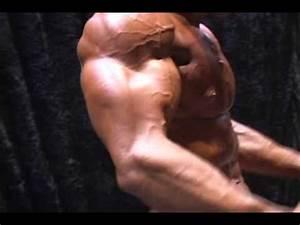 steroidi naturali per muscoli