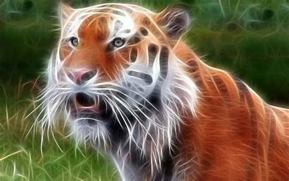 Animal 3d Wallpapers Tiger Animals Neon Iphone