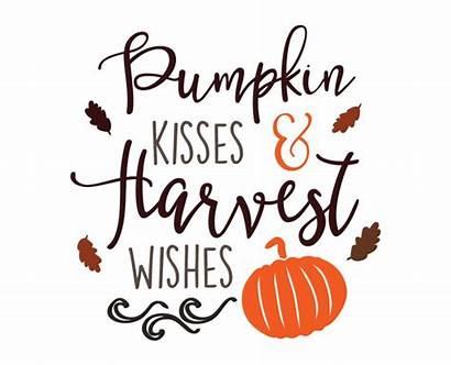 Svg Pumpkin Silhouette Vinyl Harvest Cut Fall