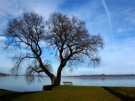 der chiemsee das bayerische meer im januar