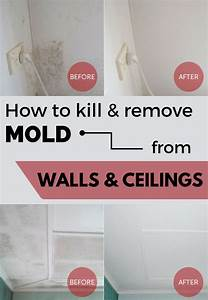 how to kill remove mold from walls and ceilings With how to remove mold from bathroom ceiling