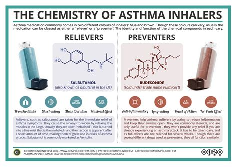 forms of asthma types of albuterol inhalers pictures to pin on pinterest
