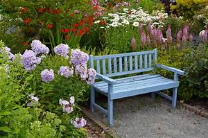 Welche Pflanzen Passen Gut Zu Hortensien : was passt zu hortensien gute pflanznachbarn ~ Lizthompson.info Haus und Dekorationen