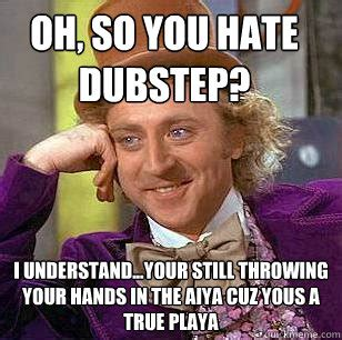 Memes Playa - oh so you hate dubstep i understand your still throwing your hands in the aiya cuz yous a