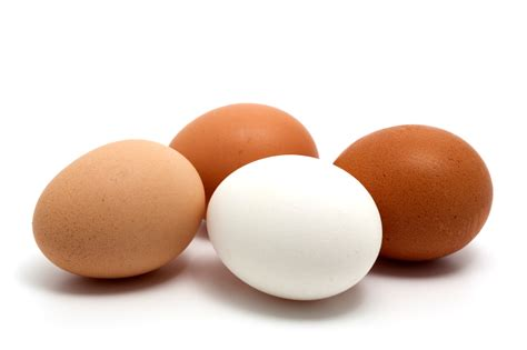 what to do with eggs world egg day 10 benefits of eggs the nation nigeria