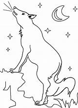 Coyote Coloring Printable Pages Wile Cool2bkids Getcoloringpages Template Popular sketch template