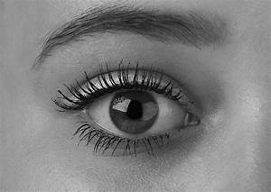 Eye Black And White – Public Domain