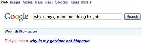 Google Did You Mean Meme - web images videos maps news shopping gmail more google why is my gardner not doing his