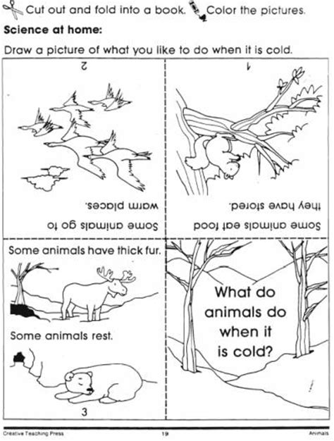 animals in winter book lovetoteach org free printable