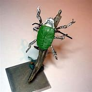 Giant Beetles Scarab