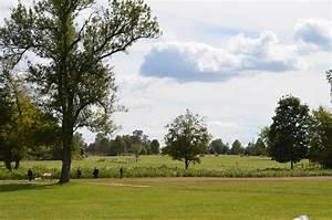 Hermitage, Landscape, Grassy, Area