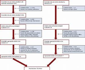 Flow Diagram According To Quorom Statement  Moher Et Al