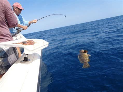grouper goliath bottom fishing reel rod rods torium jigging bay conventional rigs tampa wtb shimano amberjack season help reels thehulltruth