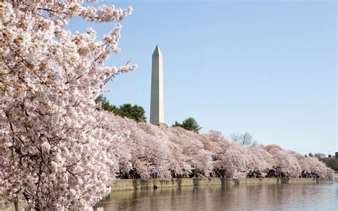 the perfect weekend in washington d c travel leisure