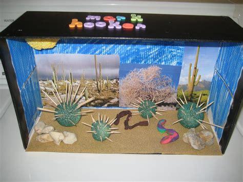 shoebox desert diorama bing images science