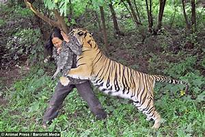This Indonesian man lives with a Bengal tiger—they live ...