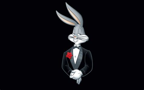 Right now we have 72+ background pictures, but the number of images is growing, so add the webpage to bookmarks and. 1920x1200 wallpapers free bugs bunny   Bunny wallpaper ...
