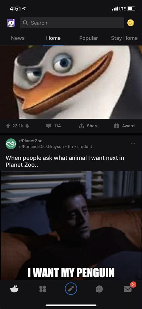 stopped browsing feed perfect planetzoo comments