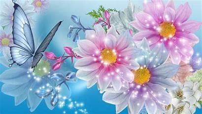 Flower Background Pretty Flowers Wallpapertag