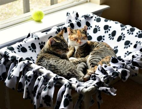 cat hammock diy 25 diy projects your pet will new craft works