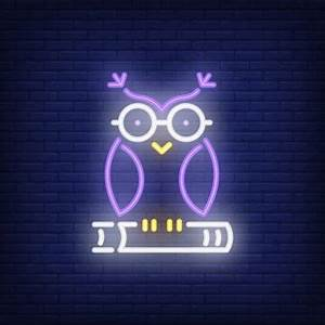 Owl Vectors s and PSD files
