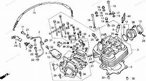 Honda Atv 1987 Oem Parts Diagram For Cylinder Head