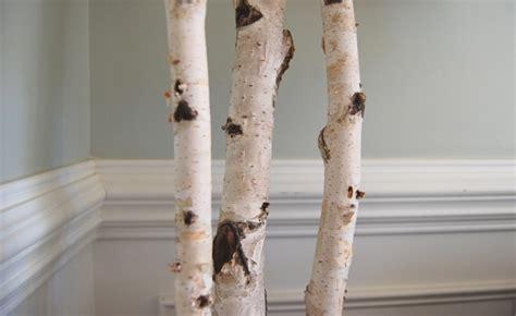Buy Tree Branch Bookshelf by Winterized Birch Tree