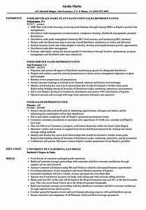 12 Resume Examples For Sales Position Radaircars Com