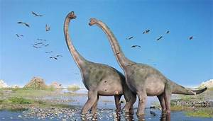 List Of Long Necked Dinosaurs Sciencing