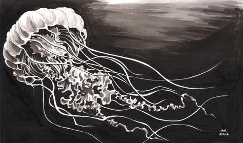 new black jelly cover jellyfish visions of the space chief