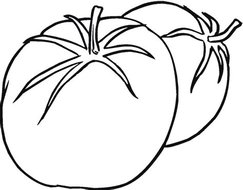 cuisine tomate dessin plant de tomate