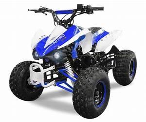 Quad 125cc Panthera : quad 125cc semi automatique panthera 8 bleu ~ Melissatoandfro.com Idées de Décoration