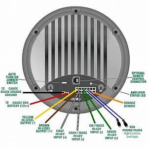 Bazooka Bta8100 Wiring Diagram