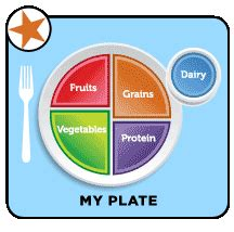 myplate food guide connecticut childrens medical center