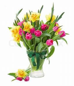 Tulpen In Vase : strau tulpen und narzissen in vase stockfoto colourbox ~ Orissabook.com Haus und Dekorationen