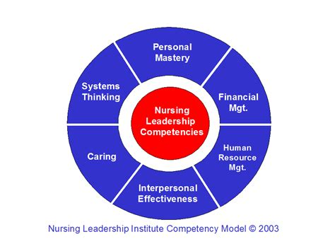 competencies  nurse leaders  today emerging