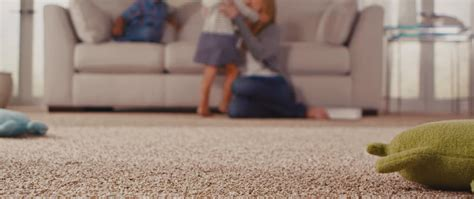 Upholstery Cleaning Indianapolis by Carpet Cleaning Indianapolis 2015 Indy Carpet Cleaning