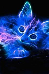 1000 images about NEON ANIMALS on Pinterest