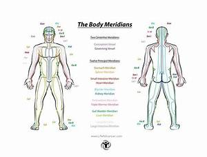 Meridian Acupuncture  How Accessing These 12 Powerful