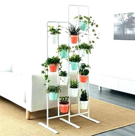 pflanzen als raumteiler zimmerpflanzen pflanzen als raumteiler wohnzimmer pflanzen