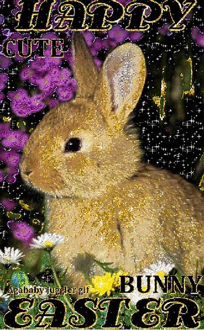 Easter Bunny Happy Sparkle