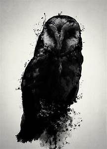 The Owl Mixed Media by Nicklas Gustafsson
