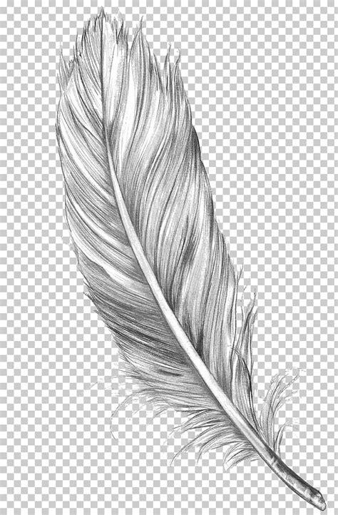 Quetzal Tattoo Black And White - tattoo design
