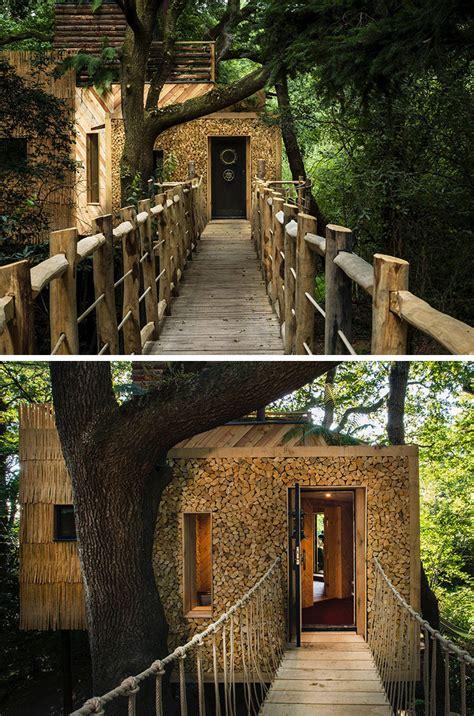 amazing treehouse hotel  designed  adults