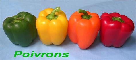 cuisiner les poivrons verts le poivron kiwiforme