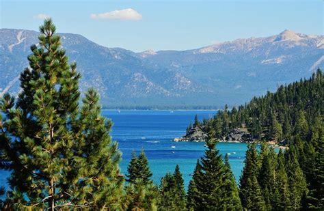 home accents sierra nevada fir tree 75 47 best lake tahoe ca images on lake tahoe ca and sunrises